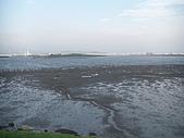 2009-05-25 微風運河 關渡大橋:CIMG6983_調整大小.JPG