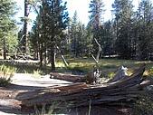 美國國家寶藏十六天:Mount San Jacinto State Park