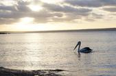 暢遊南半球──澳大利亞十日自駕之旅:暢遊南半球──澳大利亞十日自駕之旅8.jpg
