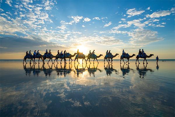 澳大利亞-凱布爾海灘(Cable Beach)日落時分的駱駝隊:澳大利亞-凱布爾海灘日落時分的駱駝隊1.jpg