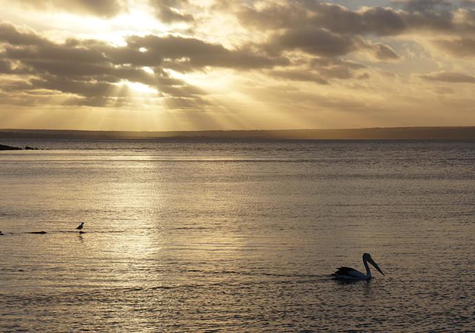 暢遊南半球──澳大利亞十日自駕之旅:暢遊南半球──澳大利亞十日自駕之旅10.jpg