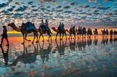 澳大利亞-凱布爾海灘(Cable Beach)日落時分的駱駝隊:澳大利亞-凱布爾海灘日落時分的駱駝隊3.jpg