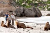 澳大利亞之袋鼠島經典兩日遊:澳大利亞之袋鼠島經典兩日遊4.jpg