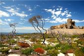 澳大利亞之袋鼠島經典兩日遊:澳大利亞之袋鼠島經典兩日遊1.jpg