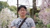 平安神宮:DSC01436.JPG