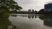內湖:DSLR-A2001906.JPG