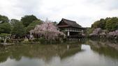 平安神宮:DSC01407.JPG