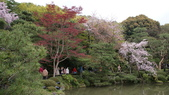 平安神宮:DSC01391.JPG