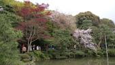 平安神宮:DSC01392.JPG