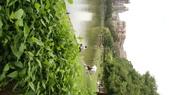 內湖:DSLR-A2001915.JPG