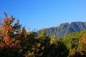 雪山..他人照片分享:DSC06124.JPG