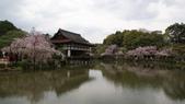 平安神宮:DSC01411.JPG