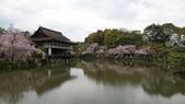 平安神宮:DSC01410.JPG