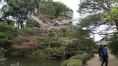平安神宮:DSC01372.JPG