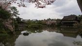 平安神宮:DSC01394.JPG