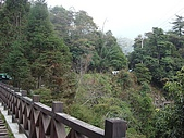 大雪山森林遊樂區:tn_DSC06263.JPG