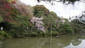 平安神宮:DSC01388.JPG