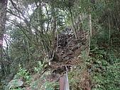 大雪山森林遊樂區:tn_DSC06268.JPG