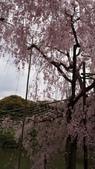 平安神宮:DSC01437.JPG