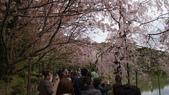 平安神宮:DSC01385.JPG