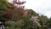 平安神宮:DSC01393.JPG
