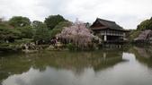 平安神宮:DSC01409.JPG