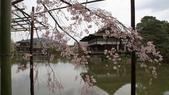 平安神宮:DSC01383.JPG