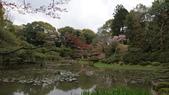 平安神宮:DSC01370.JPG