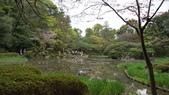 平安神宮:DSC01368.JPG