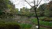 平安神宮:DSC01369.JPG