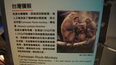 東台灣旅遊:DSC07715.JPG