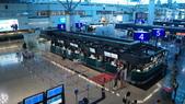 東台灣旅遊:DSC08024.JPG