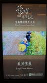台灣博物館 二:DSC00210.JPG