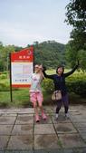 東台灣旅遊:DSC07960.JPG