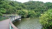 東台灣旅遊:DSC07976.JPG