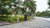 東台灣旅遊:DSC07953.JPG