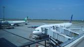 東台灣旅遊:DSC08043.JPG
