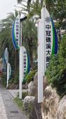 東台灣旅遊:DSC07834.JPG