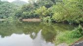 東台灣旅遊:DSC07986.JPG