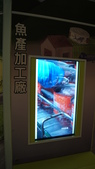 東台灣旅遊:DSC07789.JPG
