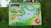 東台灣旅遊:DSC07996.JPG