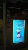 東台灣旅遊:DSC07788.JPG