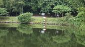 東台灣旅遊:DSC07990.JPG