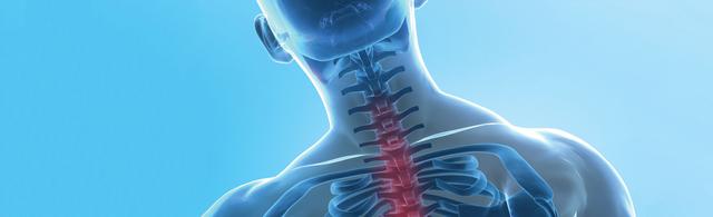 行動相簿:orthopedic-spine.jpg