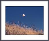 LKK的傳統相片:明月懸空 0571.jpg