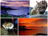 傑克攝影圑外拍(2014年):2014-5-18猴洞貓村page.jpg