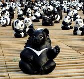 試拍、隨手拍、加減作:2014-3-26-熊貓展覽62.JPG