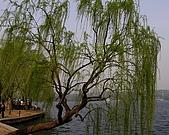 杭州、無鍚:浙江杭州西湖008.jpg