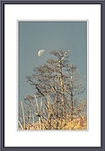 LKK的傳統相片:荒山月0572.jpg