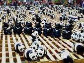 試拍、隨手拍、加減作:2014-3-26-熊貓展覽60.JPG